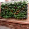 Ornamen Yang Cocok Untuk Taman Depan Rumah Minimalis