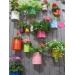 Membangun Taman Depan Rumah Minimalis Lahan Sempit